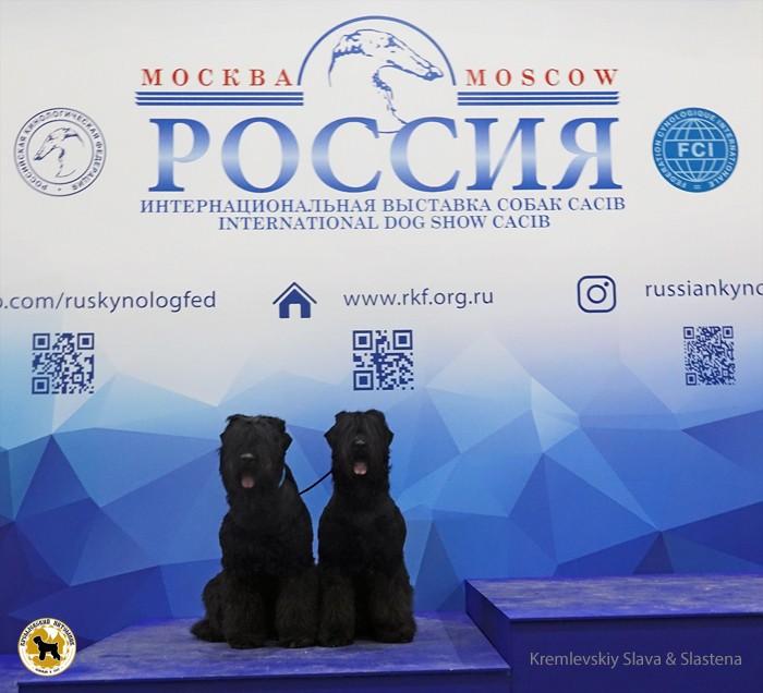 DSC00798_s_s_rossia