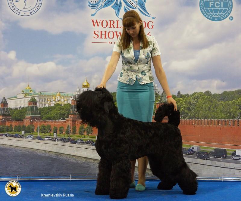 DSC02500_russia