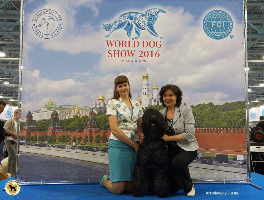 DSC02524_russia